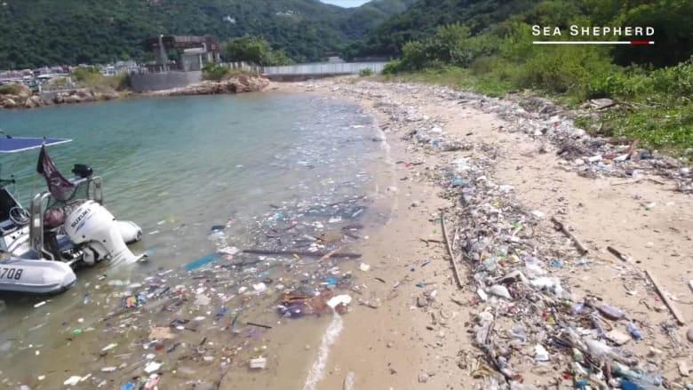 تلوث المحيطات.. كارثة بيئية تهدد الحياة في هونغ كونغ
