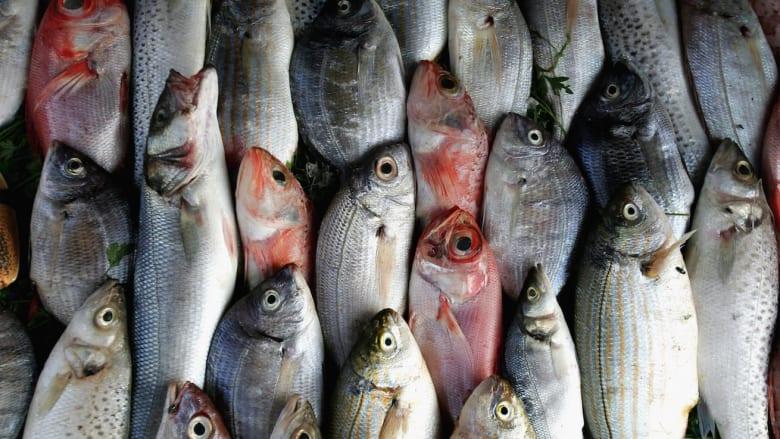شركة بحرينية توصل سوق السمك إلى باب منزلك