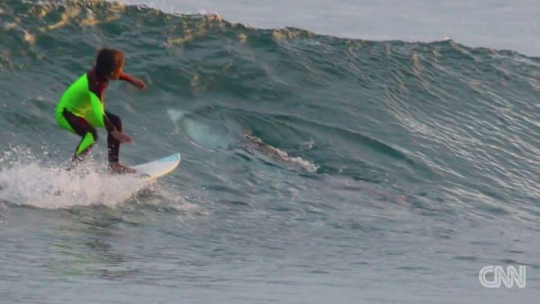 صبي يركب الأمواج بمواجهة سمكة قرش