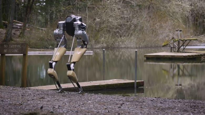 """تعرّف على """"كاسي"""".. روبوت يمشي كالنعامة"""