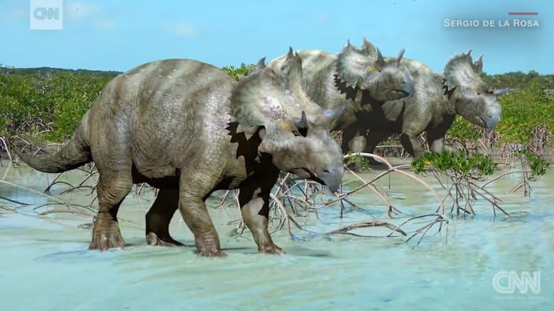 اكتشاف فصيلة جديدة من الديناصورات ذات القرون في المكسيك
