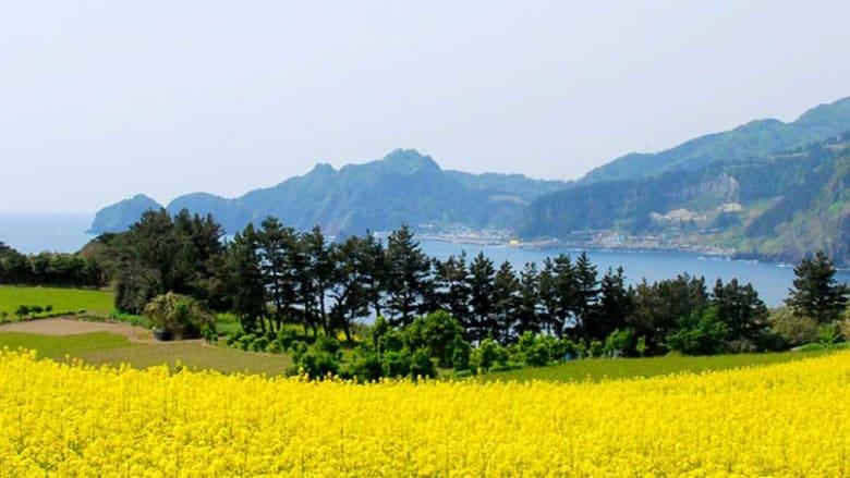 """جزر """"الفردوس"""" المكنونة في آسيا.. أقصى درجات الهدوء والرخاء"""