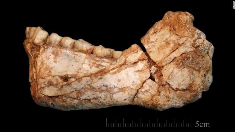 العثور على أقدم أحفورة بشرية بالعالم في المغرب