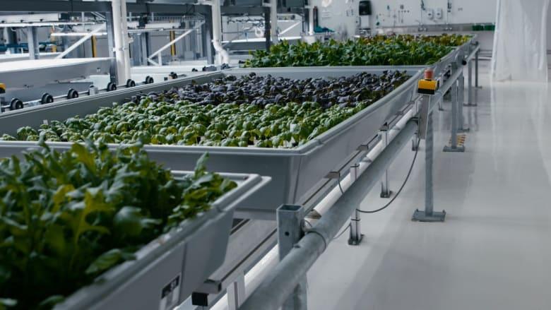 مزرعة آلية.. هل هكذا سنزرع محاصيلنا مستقبلاً؟