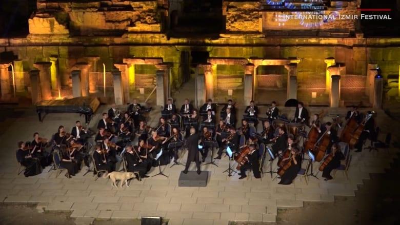 شاهد.. كلب يفاجىء فرقة أوركسترا على مسرح في تركيا