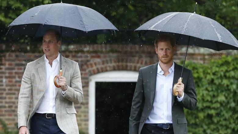 الأميران ويليام وهاري يُحييان ذكرى وفاة والدتهما ديانا العشرين