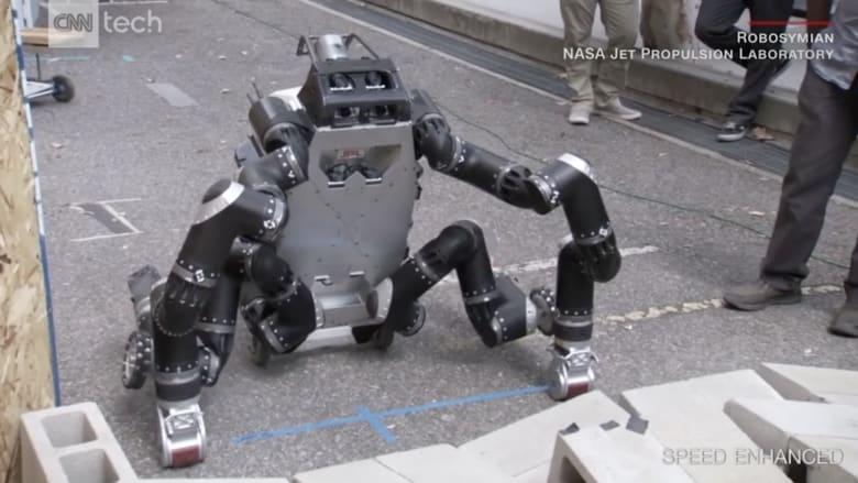 حشرات وزواحف.. هل هذه هي أغرب روبوتات المستقبل؟