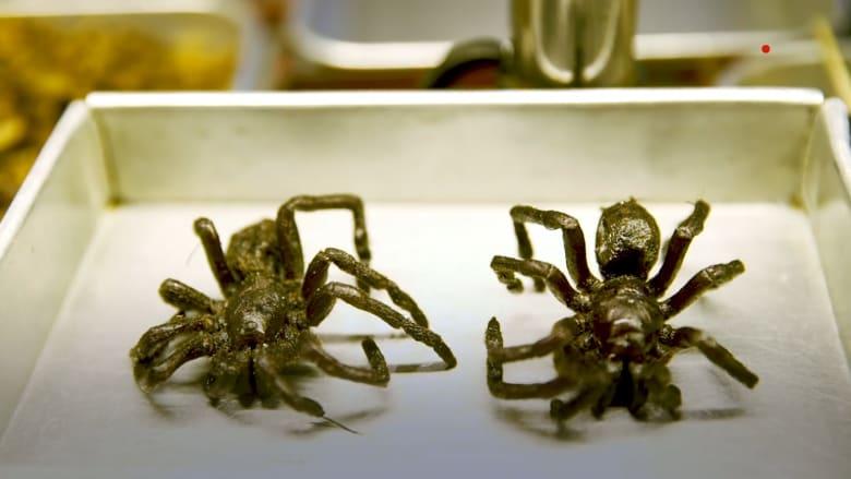 """جولة على """"أشهى"""" الحشرات في العالم..وكيفية قرمشتها"""