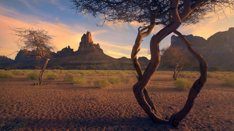 22 صورة تلخص طبيعة وتراث المملكة العربية السعودية