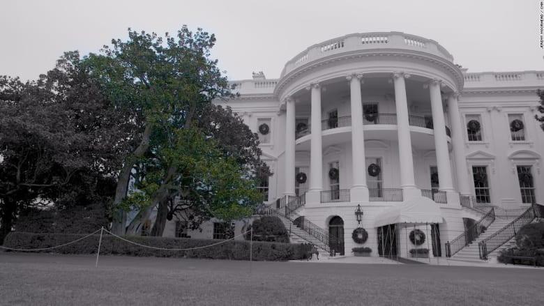 في حديقة البيت الأبيض.. نهاية مأساوية لشجرة عمرها 200 عام