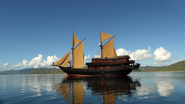 رفاهية قصوي وسط أمواج البحر.. هذه الأجنة هي الأكثر حصرية في عالم السفن!