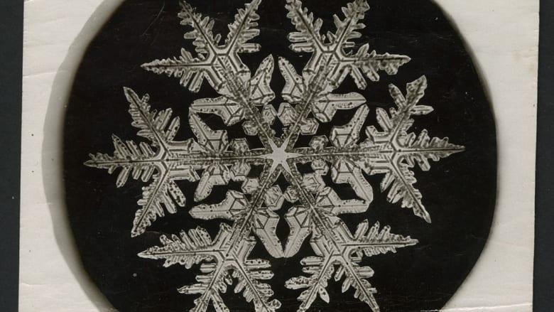 كيف التقطت أول صور البلورات الثلجية في العالم؟