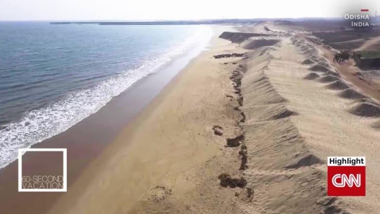 شاهد في دقيقة.. ساحل أوديشا المذهل