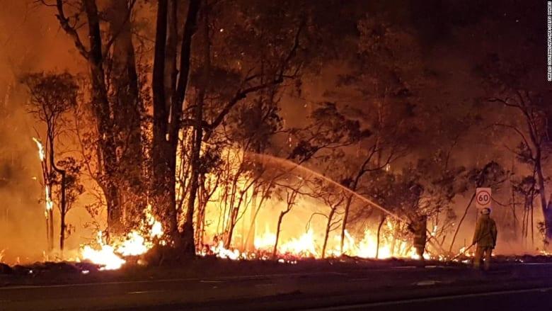 شاهد.. حرائق ضخمة تلتهم آلاف الهكتارات بأستراليا