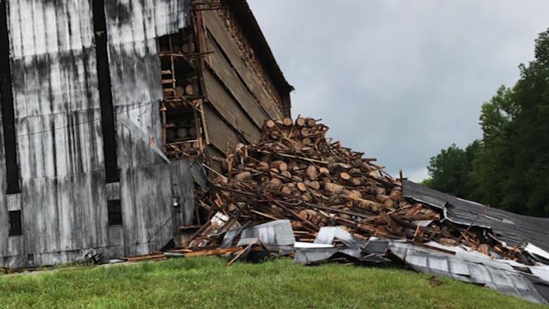 اندثار آلاف براميل النبيذ بسبب انهيار سقف مستودع للكحول