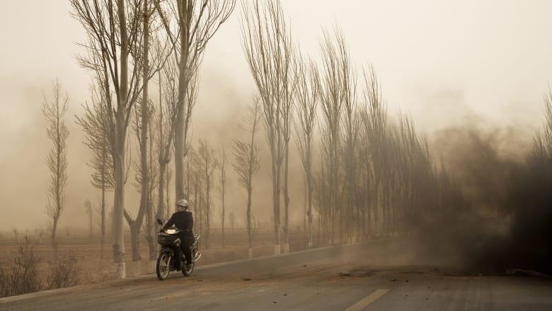 """صور """"صادمة"""" عن أزمة الاستدامة في العالم"""