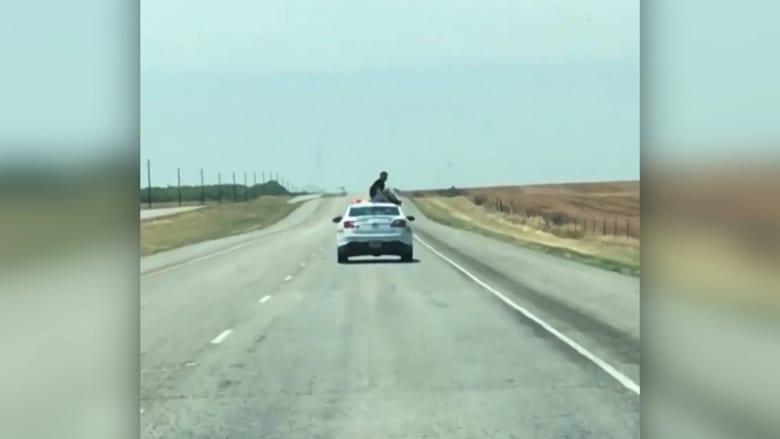 هل شاهدت سجينا يجلس فوق سيارة شرطة
