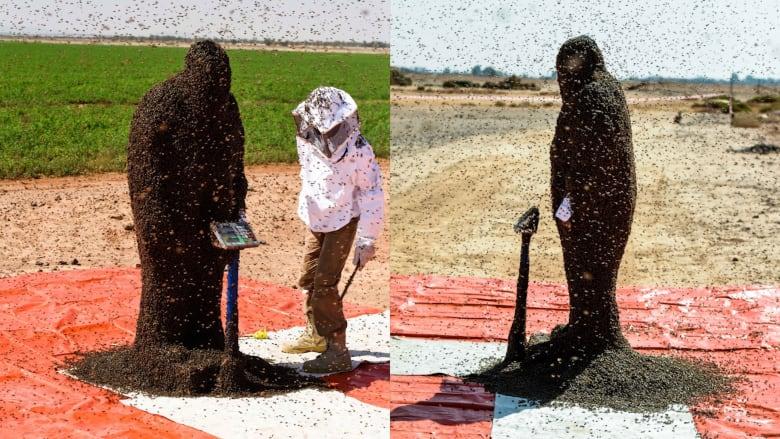 """سعودي يغطي رأسه وجسمه بعباءة من النحل.. لدخول """"غينيس"""""""