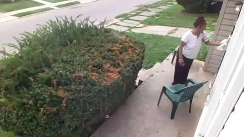 تبرّز كلب بساحة منزلها.. فكيف كان انتقام سيدة البيت؟