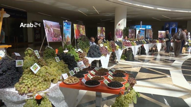 جولة في معرض العنب والعسل السنوي في دهوك