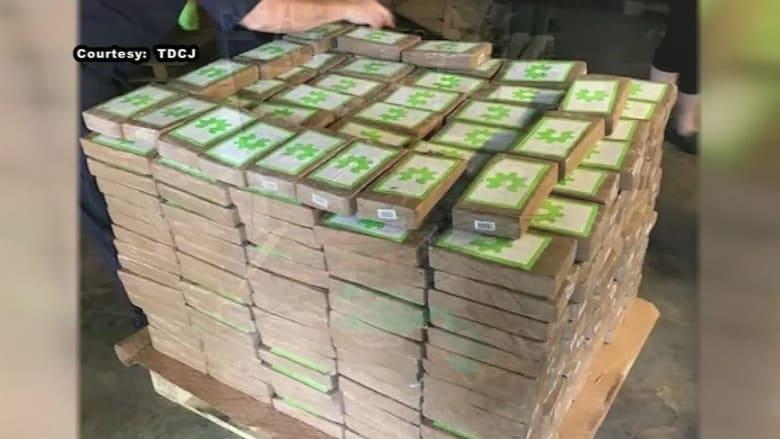 شحنة موز.. أحدث حيلة لتهريب كوكايين بـ18 مليون دولار