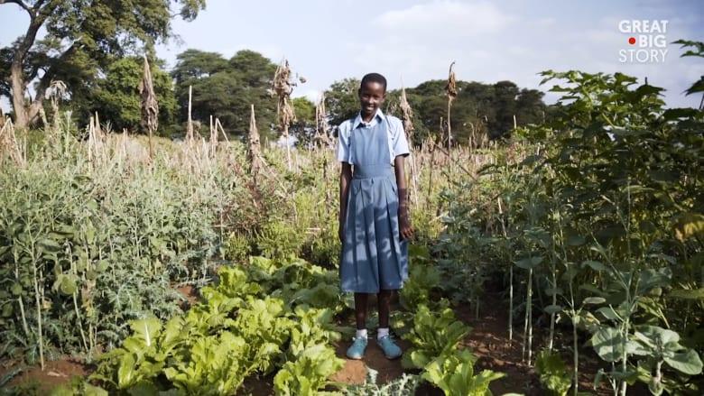 حديقة تشبع البطون والعقول في تنزانيا