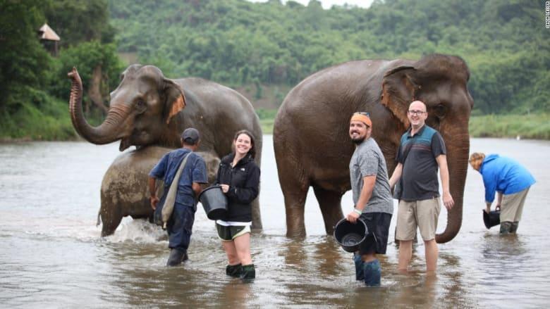 """هل هذا """"منتجع"""" الفيلة الأفضل في لاوس؟"""