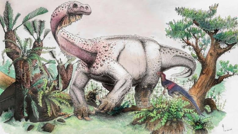 """ما هو ديناصور """"الرعد العملاق عند الفجر"""" الذي اُكتشف حديثاُ؟"""
