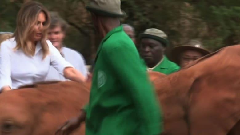 رد فعل ميلانيا ترامب بعد دفعها بواسطة فيل في كينيا