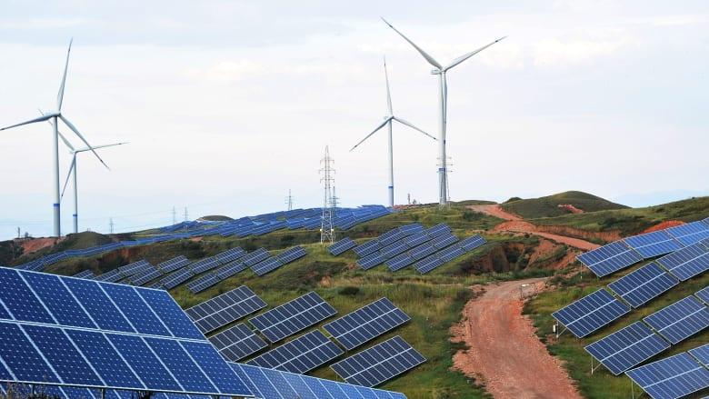 مدير الوكالة الدولية لـCNN: الطاقة المتجددة ستصبح الأرخص في