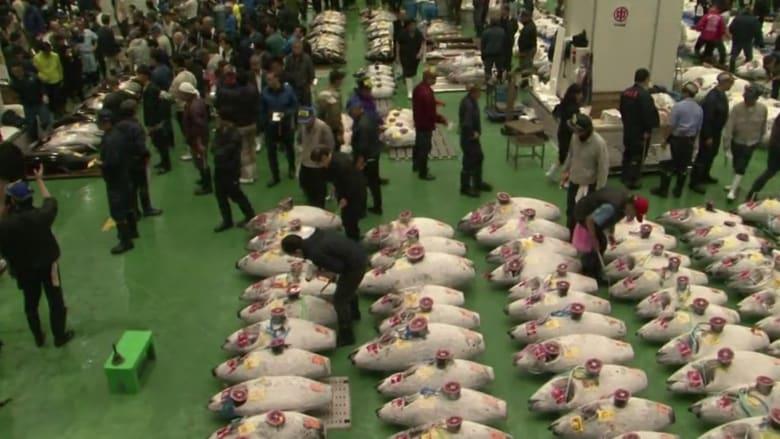 أكبر سوق للأسماك في العالم يعود في موقعٍ جديد في طوكيو
