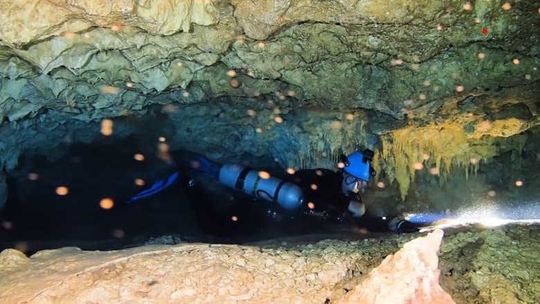 في هذه الكهوف البحرية.. استكشف زوايا لم يتواجد فيها البشر قط