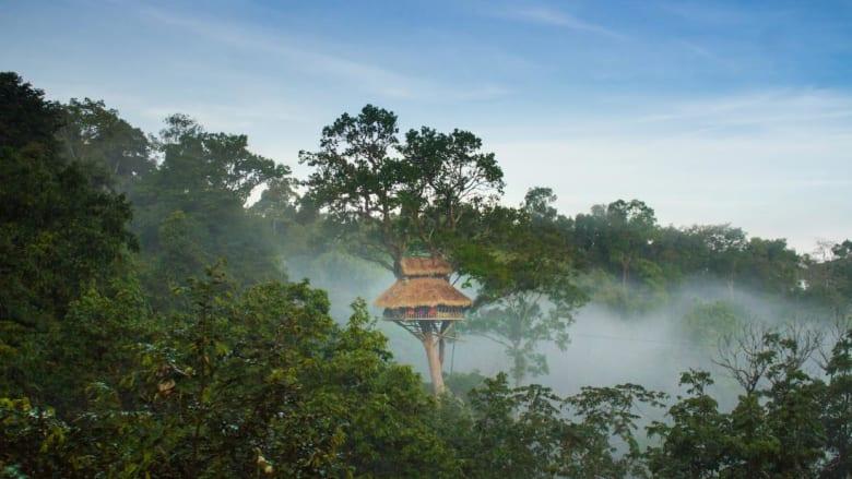 181213144636-laos-gibbon-experience-treehouse-super-169.jpg