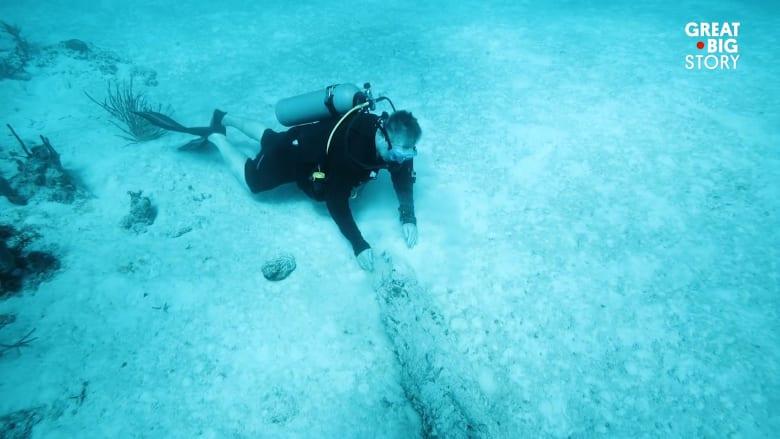 """بين حطام السفن.. تعرف إلى """"إنديانا جونز تحت الماء"""""""