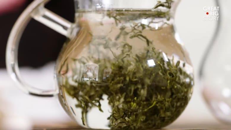 كيف كان طعم أقدم شاي في العالم؟
