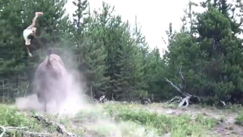 ثور يهاجم طفلة ويرميها في الهواء في منتزه بأمريكا