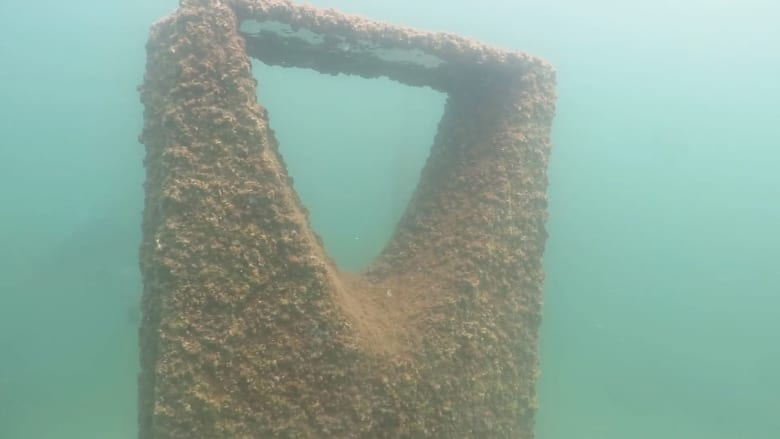 في شاطئ نصف القمر بالسعودية.. زُر أول متحف تحت الماء في المملكة ويتزين بمعالم دول الخليج