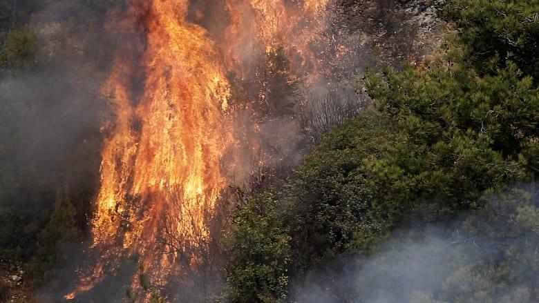 """وصفوها بـ""""اغتيال حولها إلى رماد"""".. كيف تفاعل فنانون لبنانيون مع حرائق الغابات؟"""