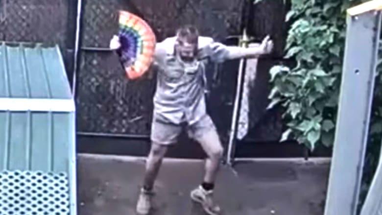 فيديو لرقصة حارس حديقة حيوانات في ظل جائحة فيروس كورونا يجتاح الانترنت