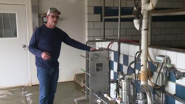 مزارعو الألبان في الولايات المتحدة يتخلصون من الألبان.. والسبب؟