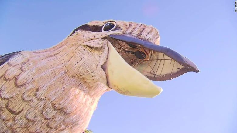 200527080010-03-australian-artist-giant-kookaburra-super-169.jpg