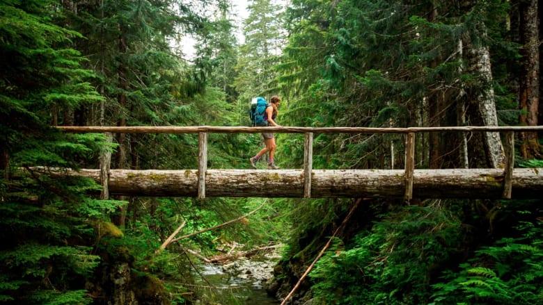 كأنك بين أشجارها.. استمع لصوت الطبيعة في هذه الحديقة
