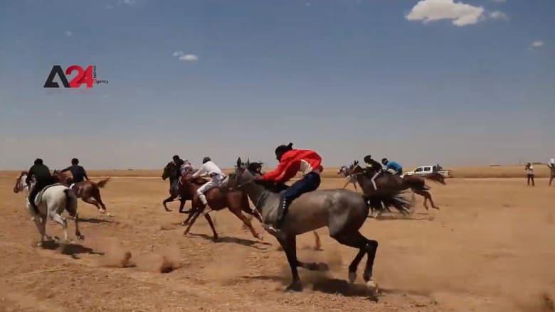 مهرجان الخيول العربية الأصيلة ينطلق في مدينة تل حميس السورية