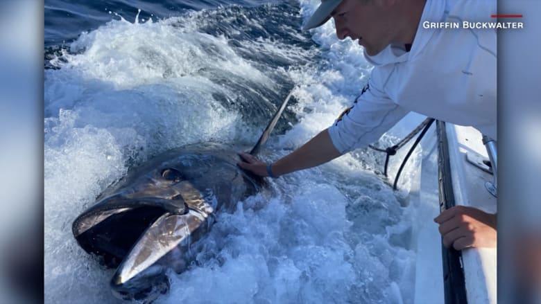 صيد العمر.. مراهقون يصطادون سمكة تونة ذات الزعانف الزرقاء بوزن 700 رطلا