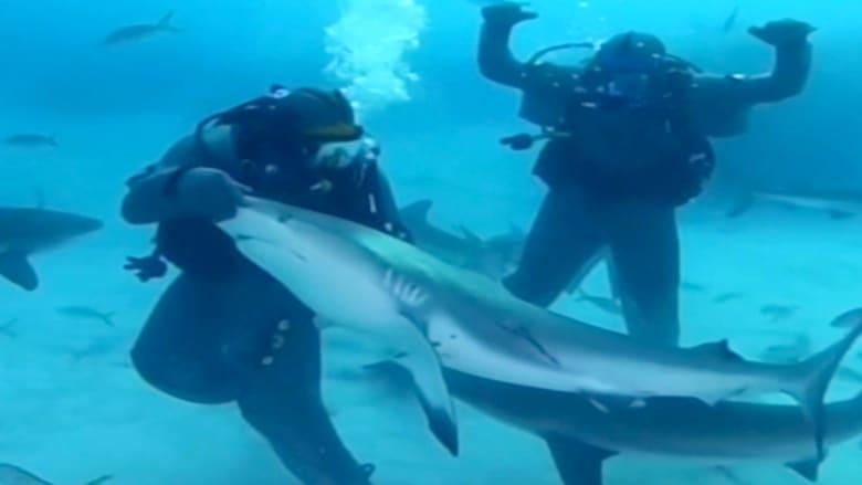 رغم خوفه منها.. مايك تايسون يخضع سمكة قرش