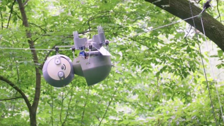 """هذا الروبوت """"الكسلان"""" يكافح تغير المناخ.. تعرفوا عليه"""