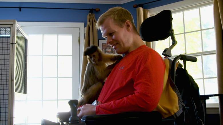 مركز علاج يستخدم القرود لمساعدة الأشخاص على استعادة الحركة