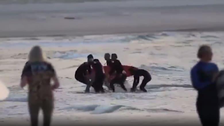 فيديو التقط بالصدفة.. قرش يهاجم راكب أمواج بأستراليا ويقتله بعضة واحدة