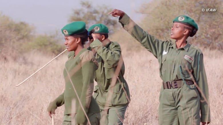 """""""فريق اللبؤة"""".. أول وحدة حراسة من النساء فقط لحماية الحياة البرية في أفريقيا"""