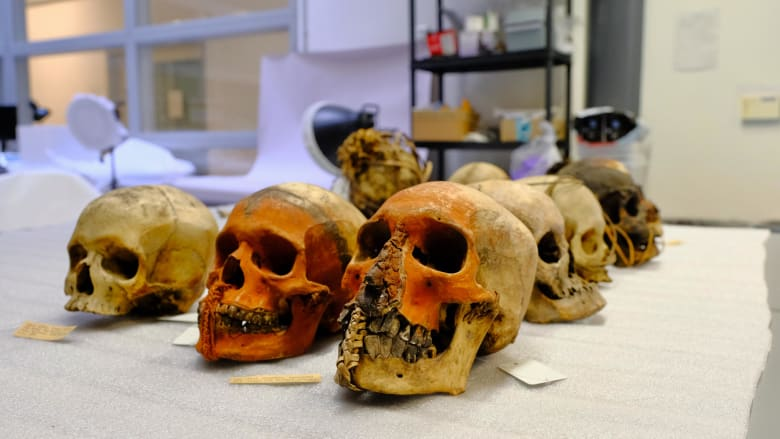 """بينها مومياء مصرية لطفل.. متحف بريطاني يزيل بقايا بشرية في """"عملية إنهاء الاستعمار"""""""